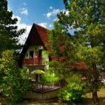 01-Green House Divcibare Kuca Smestaj Apartmani-Pogled Sa Jugo Istoka