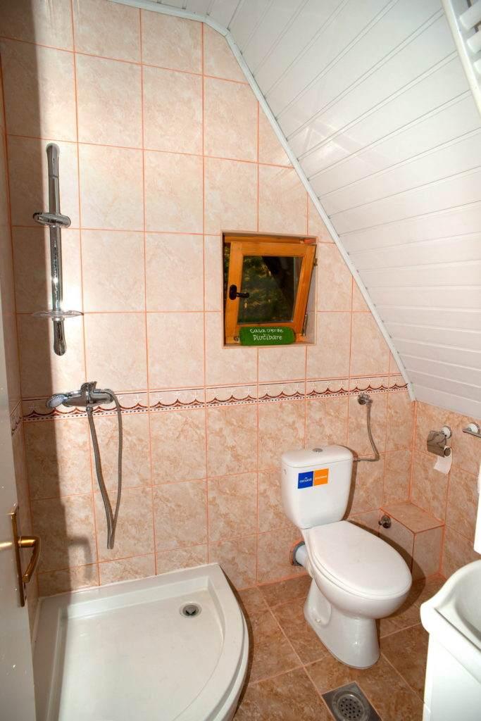 26-Green House Divcibare Kuca Smestaj Apartmani-Sprat Kupatilo Sa Ulaza