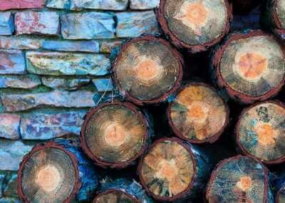 Galerija fotografija Green House Divcibare Drva Za Grejanje