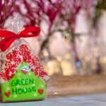 Slatka Kucica Green House Divcibare